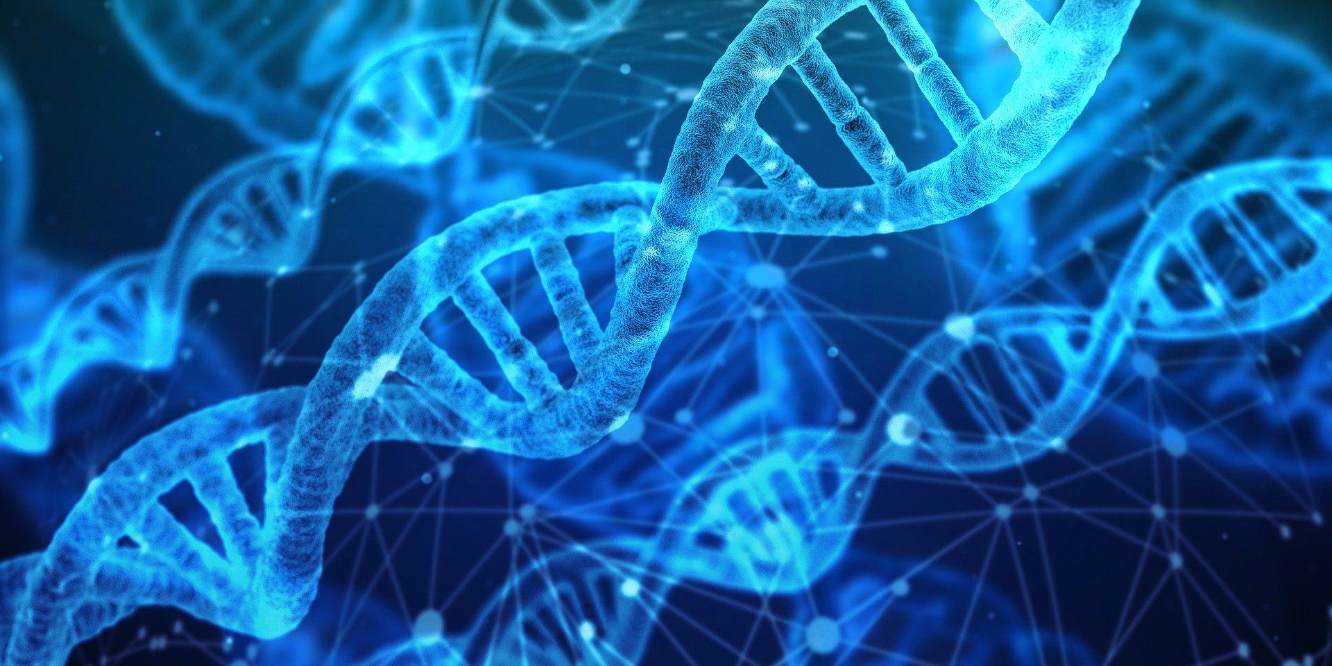 La traducción científica, médica y farmacológica